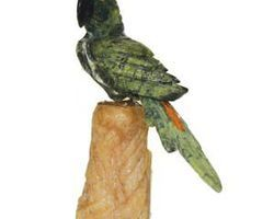 Perroquet stgperr